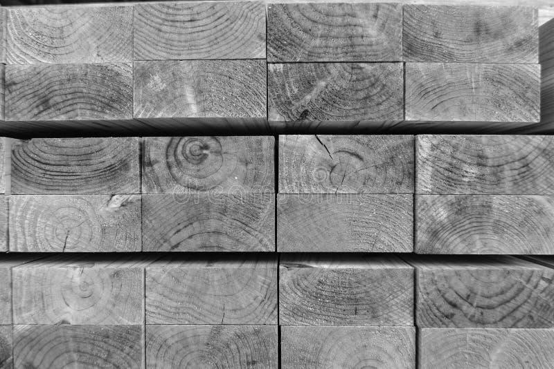 Industria di trasformazione del pino nel Giappone fotografia stock