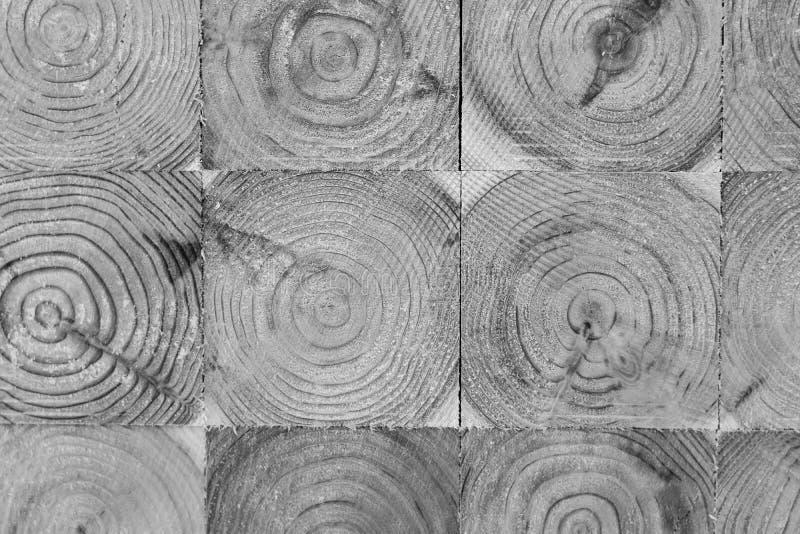 Industria di trasformazione del pino nel Giappone immagini stock libere da diritti