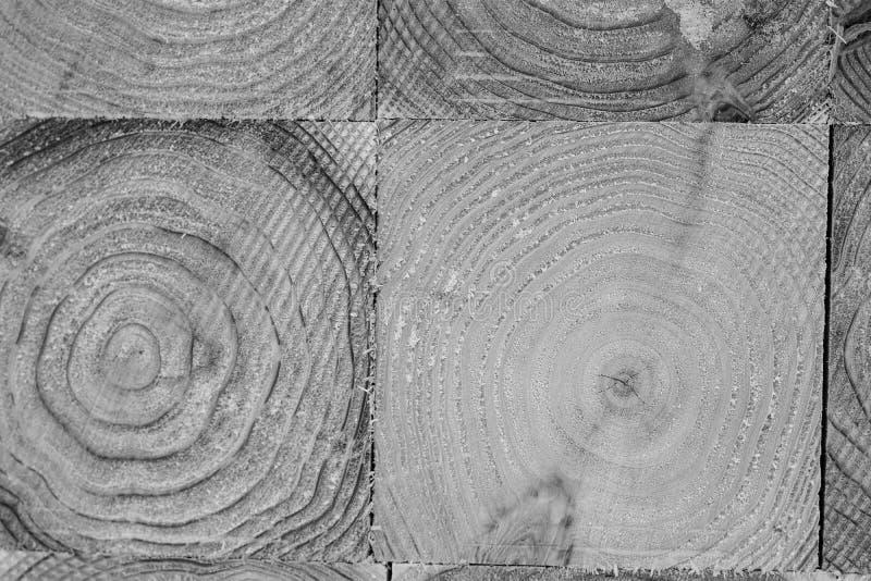 Industria di trasformazione del pino nel Giappone immagine stock libera da diritti