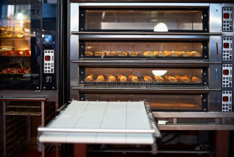 Industrial convection oven with cooked bakery products for catering. Professional kitchen equipment. Professional industrial equipment stock images