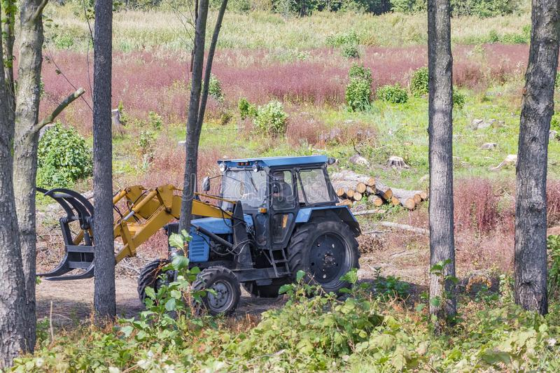Industrial deforestation by forestry workers using machinery. Deforestation and loading, the work of the forest industry and a permanent business of people, pine stock images