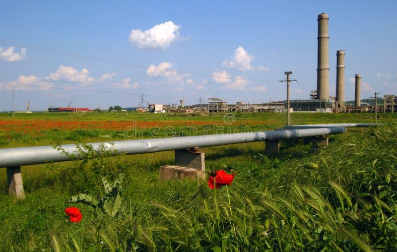 Industrieel ruïnes, buizen & bloemengebied stock afbeeldingen