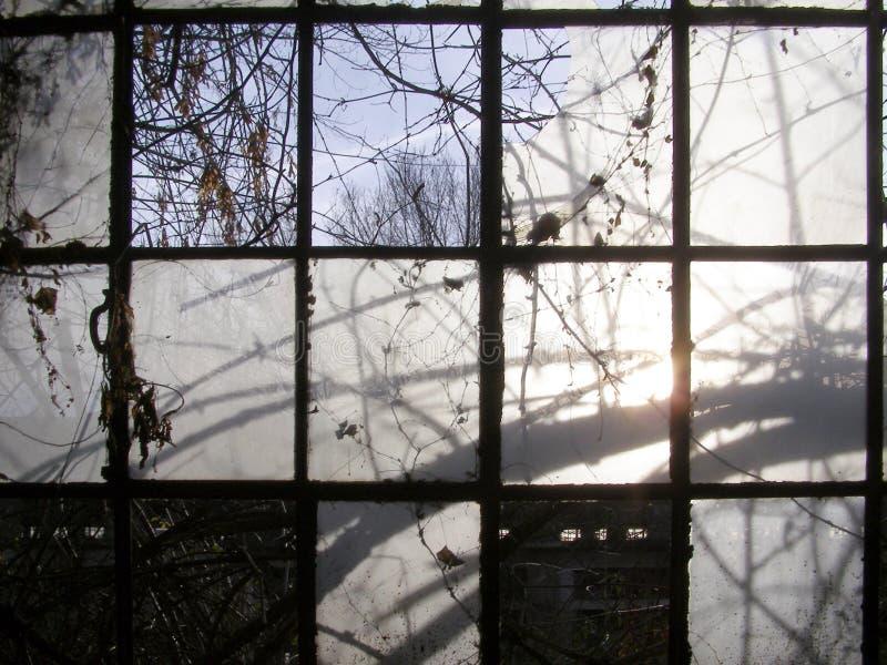 industriella gammala fönster arkivfoto