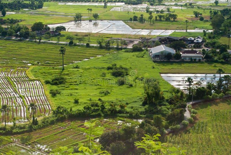 Industriellt jordbruks- ingrepp royaltyfria bilder