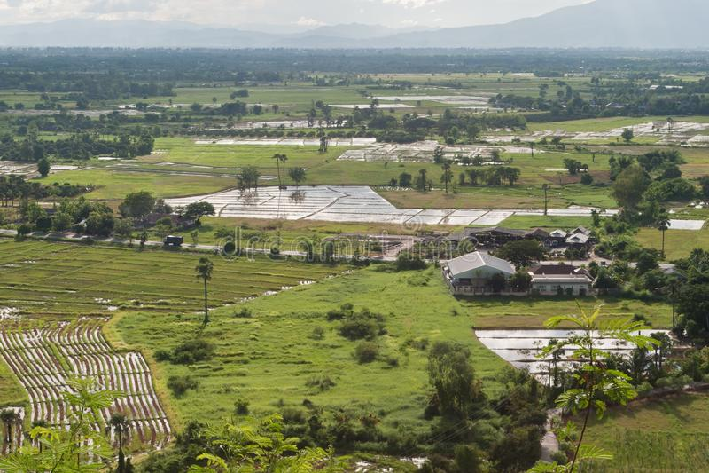 Industriellt jordbruks- ingrepp arkivbilder