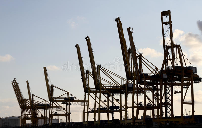 Industry cranes silhouettes. On the shore in industrial port royalty free stock photo