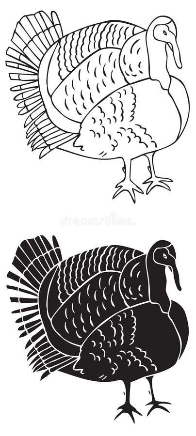 Indyczy ptak na białym tle ilustracja wektor