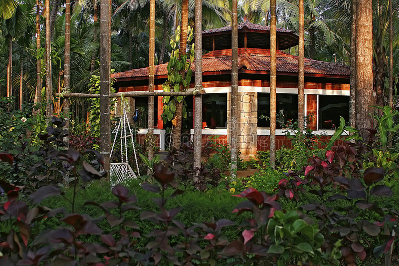 indyjska cukierniana dżungli obraz stock