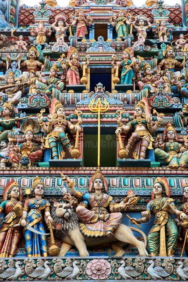 indyjski mały Singapore zdjęcie royalty free
