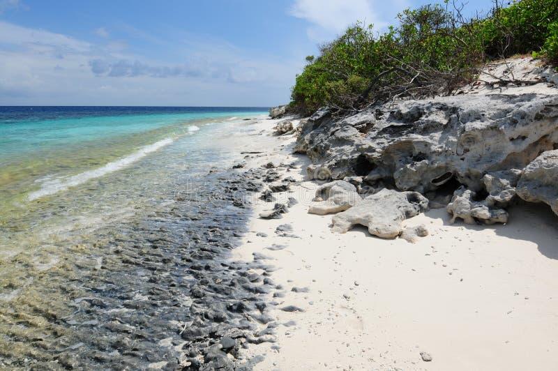 indyjski wyspy ma mirihi oceanu kurort zdjęcie royalty free