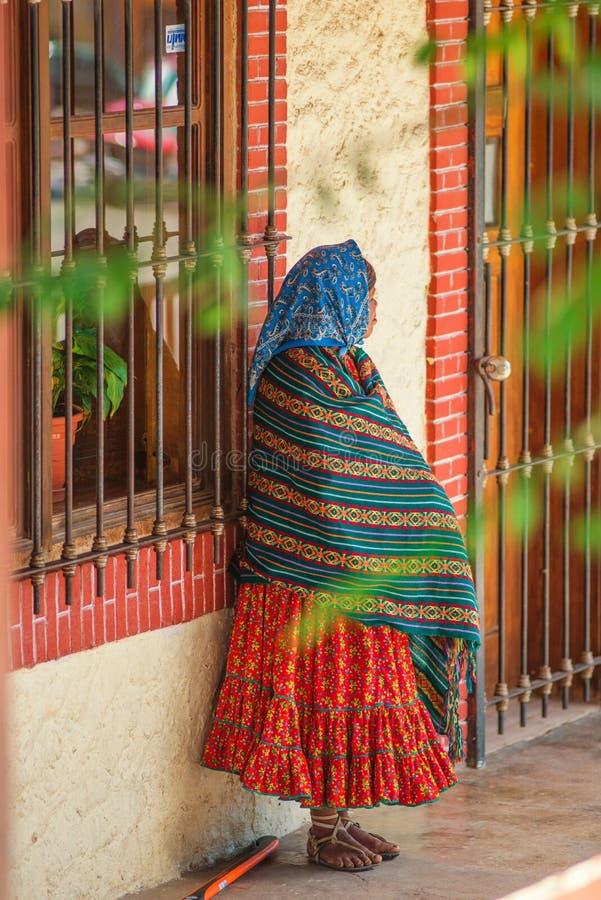 Infödd infödd gammal dam i färgrik traditionell klänning, i Mexico, Amerika royaltyfri foto