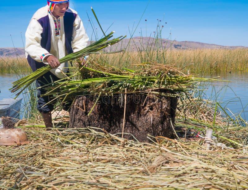 Infödd man som arbetar på den traditionella byn av den sväva Uros Islands arkivfoton