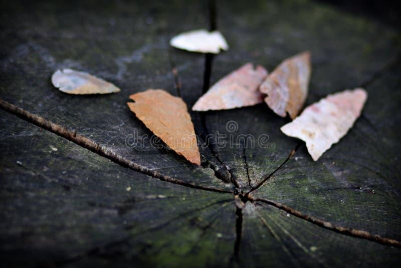 infödda amerikanska arrowheads arkivfoton