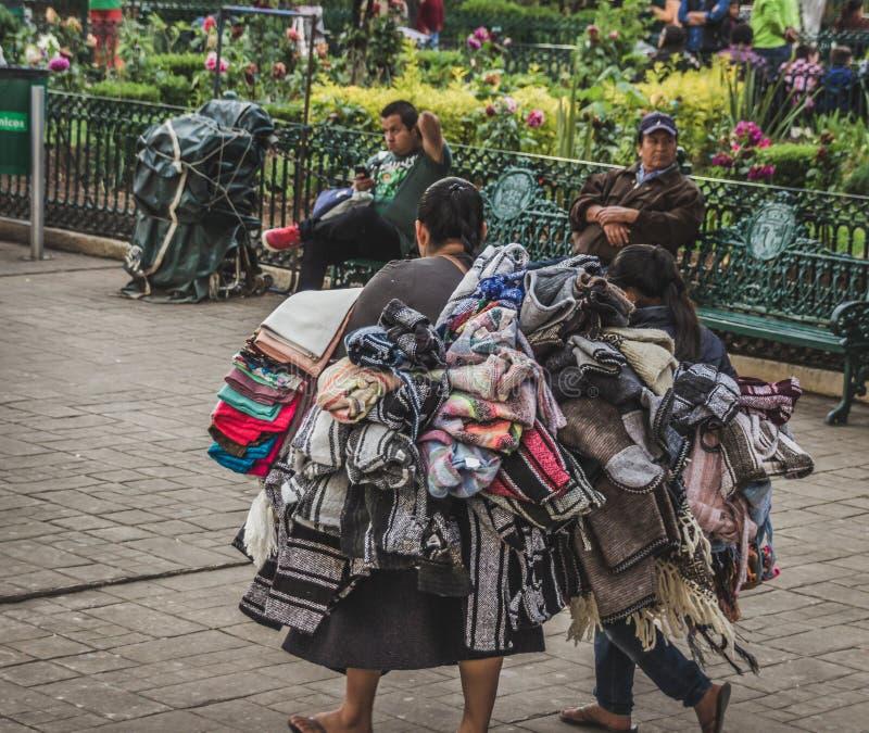 Infött sälja för kvinna handcrafts i gatan av Chiapas royaltyfri bild