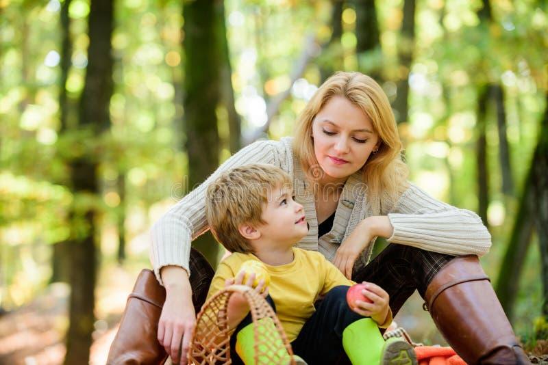 Inf?ncia feliz Menino da mam? e da crian?a que relaxa ao caminhar o piquenique da fam?lia da floresta Mulher bonita da mãe e filh imagem de stock