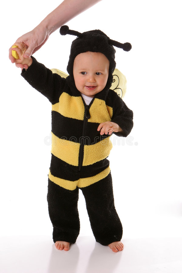 Infant baby bee royalty free stock image