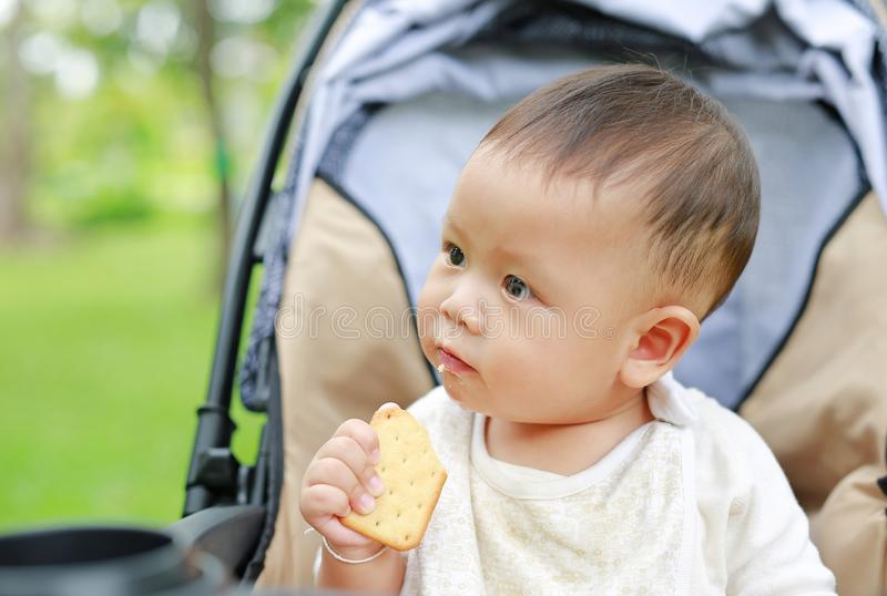 Infant baby boy eating cracker biscuit sitting on stroller in nature park.  stock photography