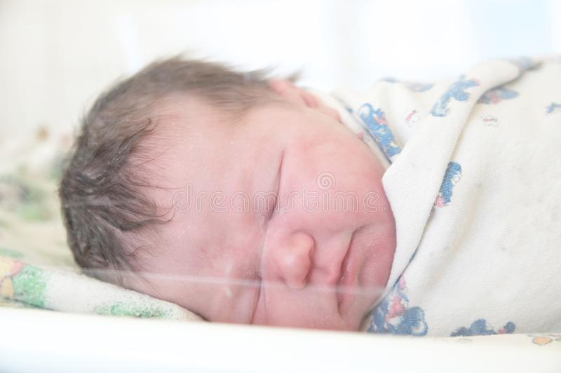 Infant baby sleeping in crib in first day life. In maternity hospital stock image