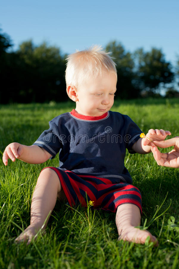 Infant recieving Flower from Mum. Description: My son looking innocent and happy as he is given a flower for the first time Location: Corsham, Wiltshire, UK royalty free stock images