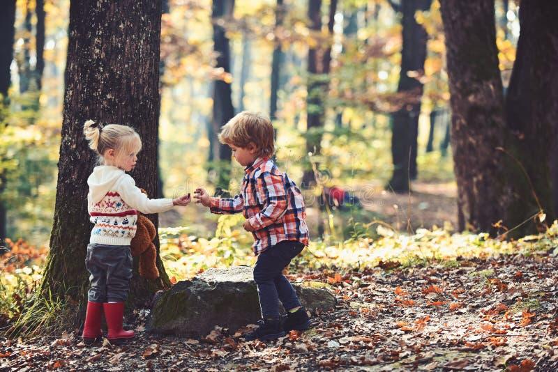 Infanzia ed amicizia del bambino, amore e ragazzino e ragazze di fiducia che si accampano in legno Bambini attività e attivo immagini stock libere da diritti