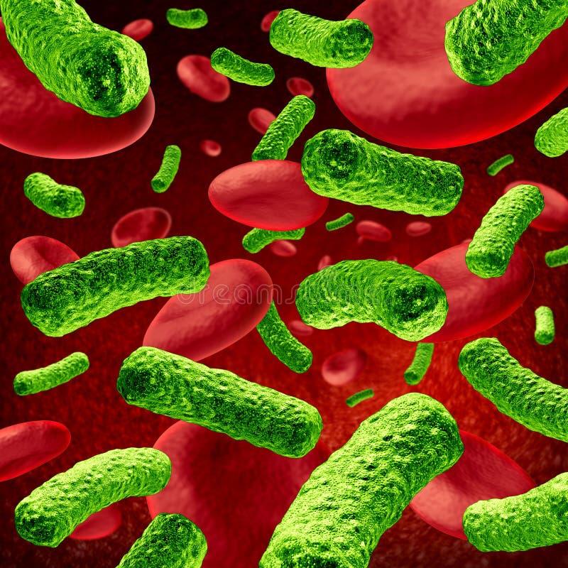 Infección de la sangre de las bacterias ilustración del vector