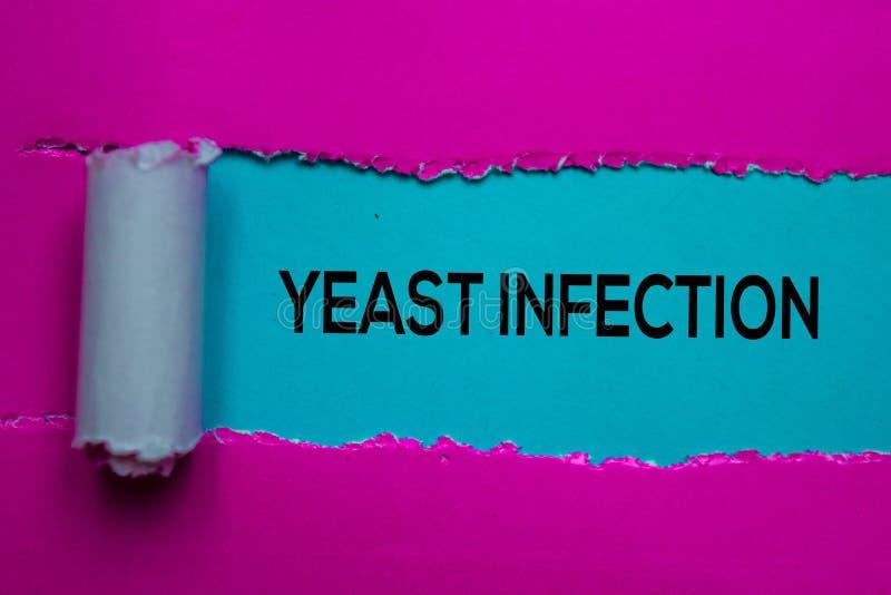 Infection à la levure Texte écrit dans du papier déchiré Concept médical image libre de droits