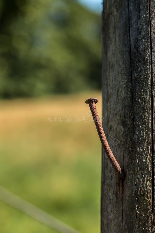 Infektion durch rostigen Nagel lizenzfreies stockbild
