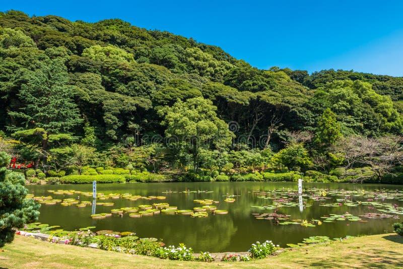 Infierno de Umi Jigoku o del mar en Beppu, Oita, Japón fotografía de archivo libre de regalías
