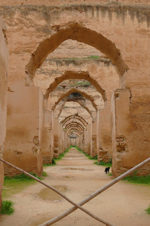 Infinite road in Morocco. Infinite ride in Morocco where you can see all the roads royalty free stock photos