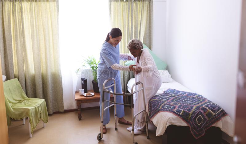 Infirmière féminine aidant le patient féminin supérieur à se tenir avec le marcheur photo libre de droits
