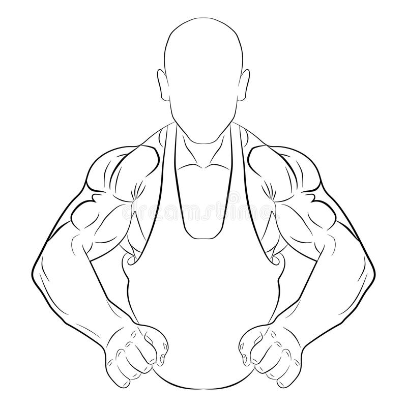 Inflated body muscle man vector drawing illustration royalty free stock photos