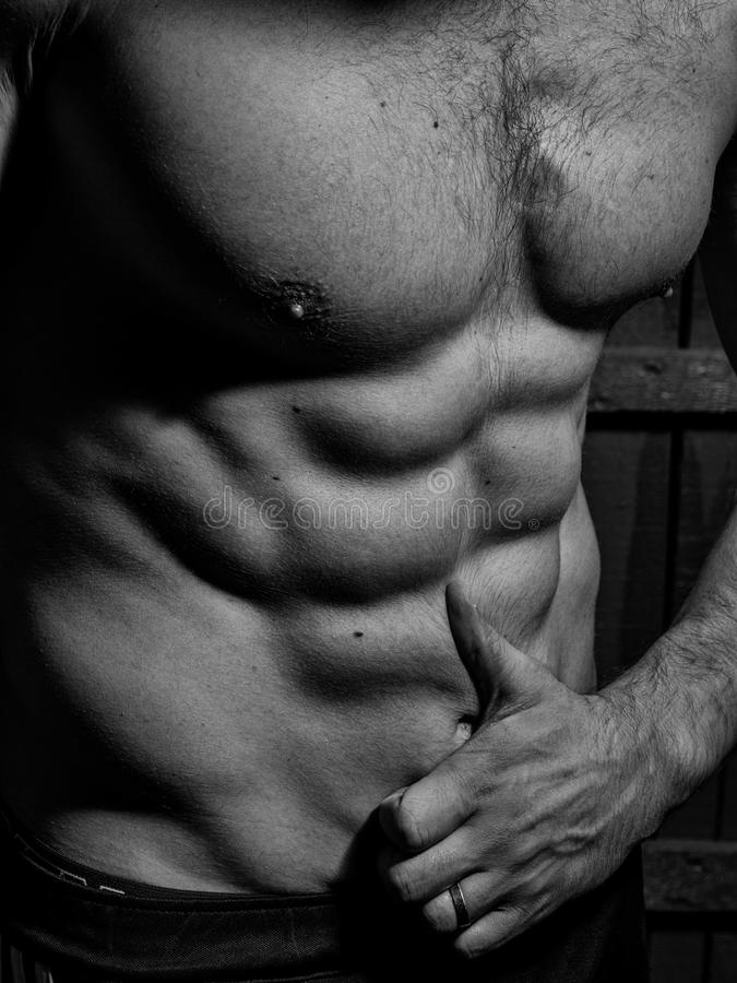 Inflated male press. Muscular male torso stock photo