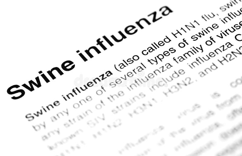Influenza dei maiali o testo del virus H1N1 fotografie stock