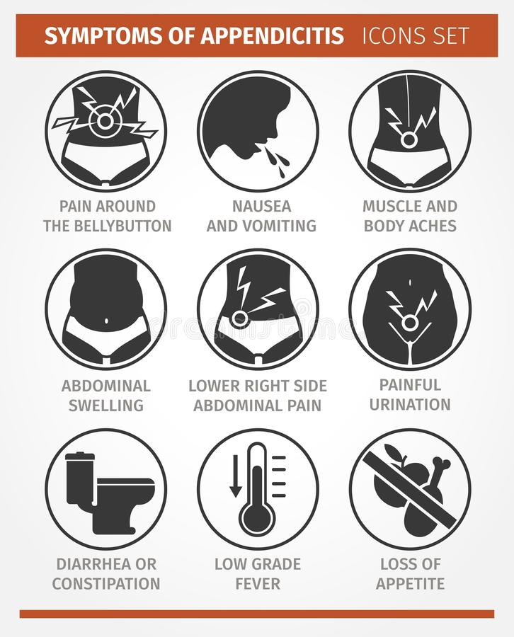 infographic的传染媒介 肠痈的症状 象集合 库存例证