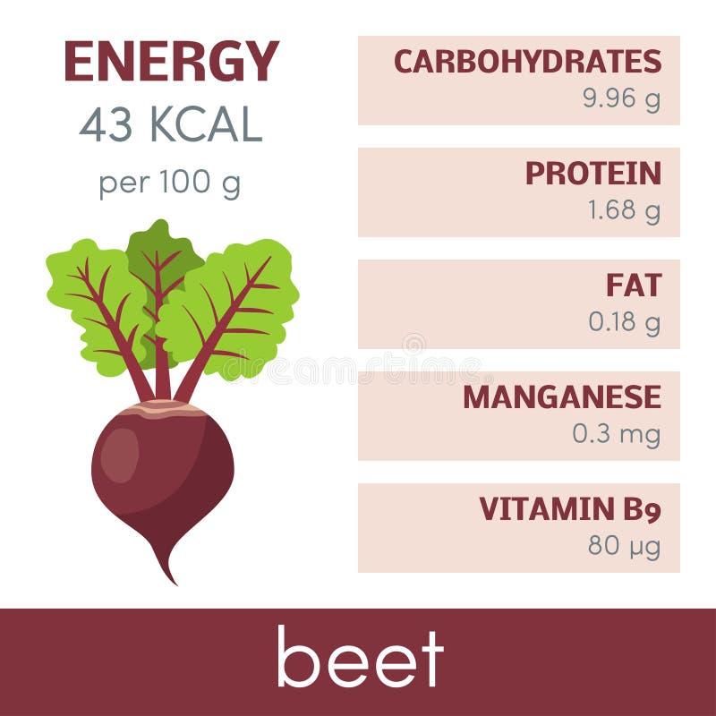 infographic的甜菜 皇族释放例证