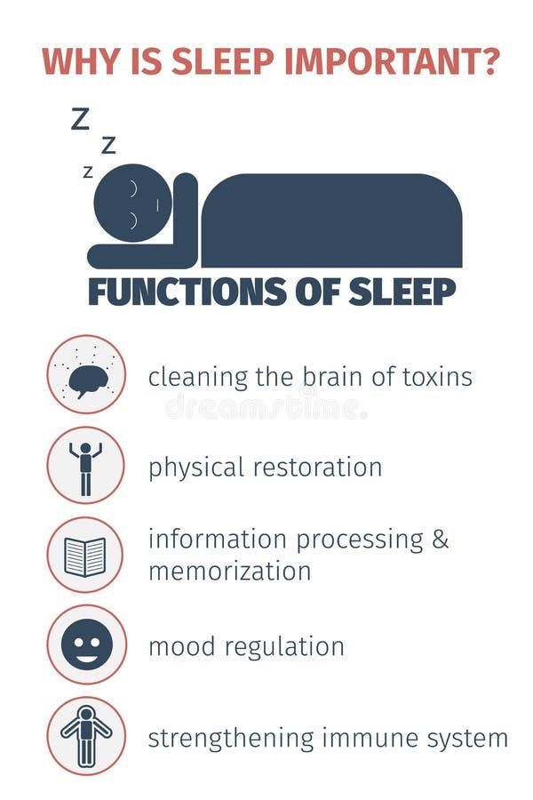 infographic的睡眠 向量例证