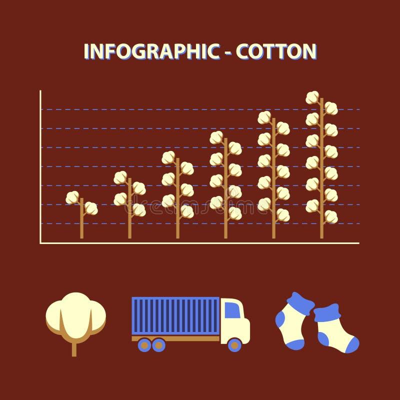 Infographic με τη γραφική παράσταση του βαμβακιού παραγωγής αύξησης απεικόνιση αποθεμάτων