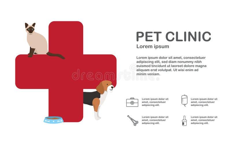 Infographic του κτηνιατρικού ατόμου με το ζώο ελεύθερη απεικόνιση δικαιώματος