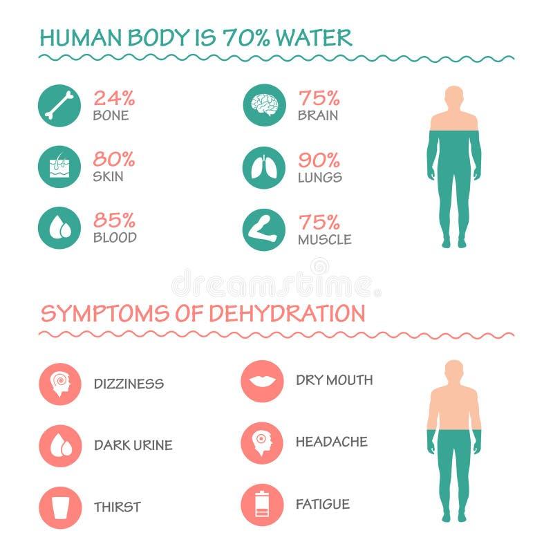 infographic иллюстрация, питье, вода иллюстрация штока