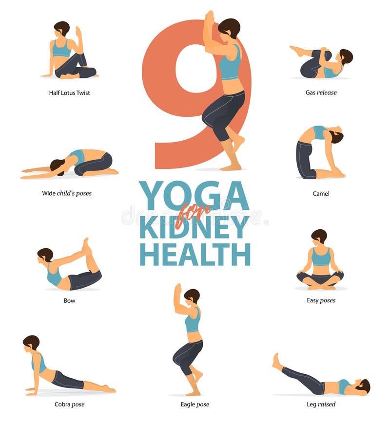 Infographic 9 представлений йоги для здоровья почки в плоском дизайне Женщина красоты делает тренировку для прочности почки r иллюстрация вектора