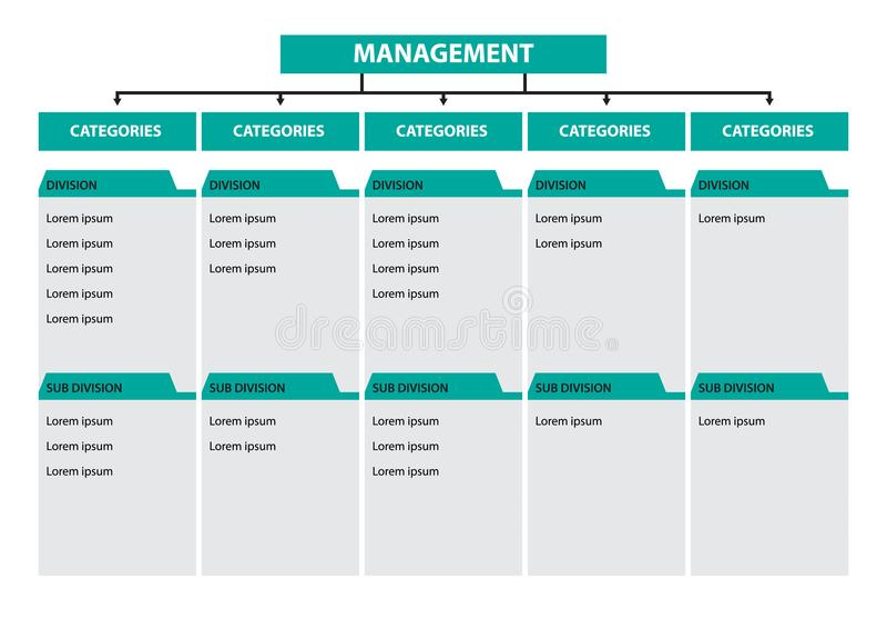 Infographic-Baumdiagramm-Managementkategorienabteilungs-Unterteilungszeitachse lizenzfreie abbildung