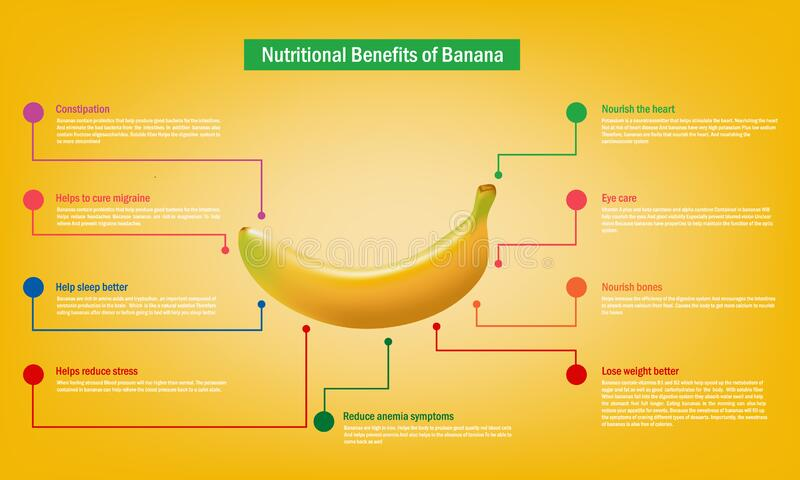 Benefits of ripe banana Infographic about nutrients in banana Fruit and agriculture vector illustration nutrition and healthy food. Infographic of Benefits of stock illustration