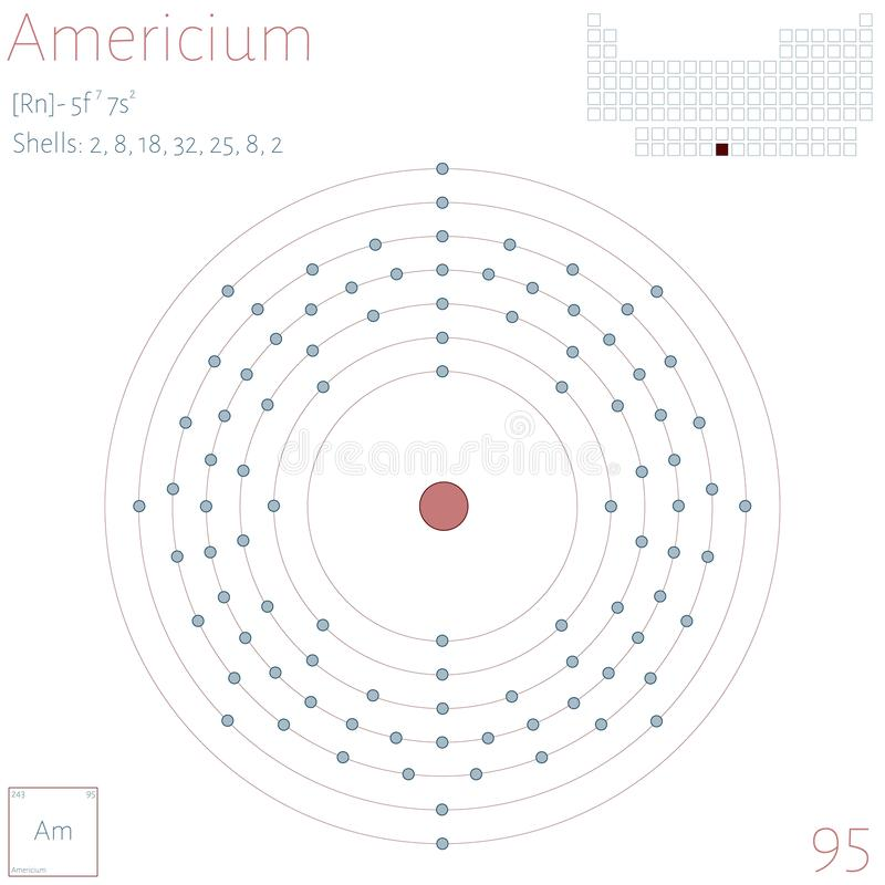 Infographic of the element of Americium vector illustration