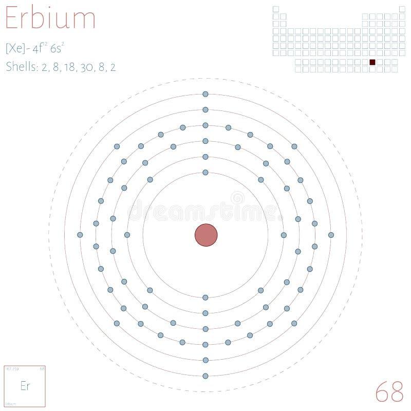 Infographic of the element of Erbium vector illustration