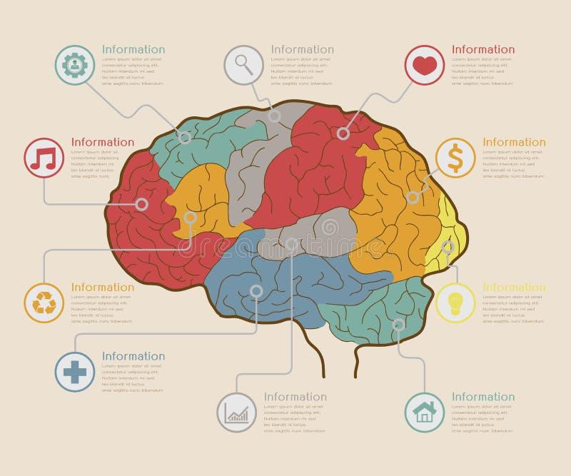 Infographic elementy, Móżdżkowy pojęcie ilustracji