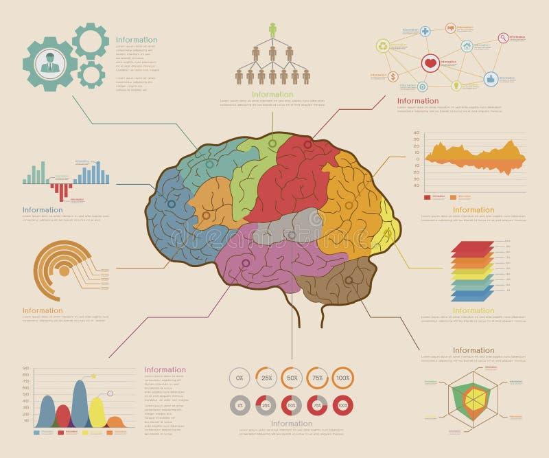 Infographic elementy, Móżdżkowy pojęcie royalty ilustracja