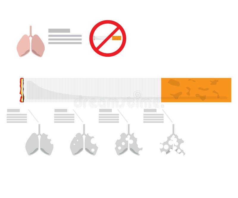 Infographic för lunga förstör från cigaretten, tobak vektor illustrationer