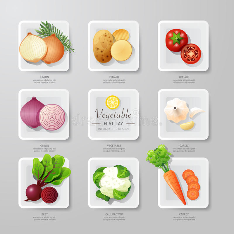 Infographic food vegetables flat lay idea. Vector illustration. Hipster concept.can be used for layout, advertising and web design stock illustration