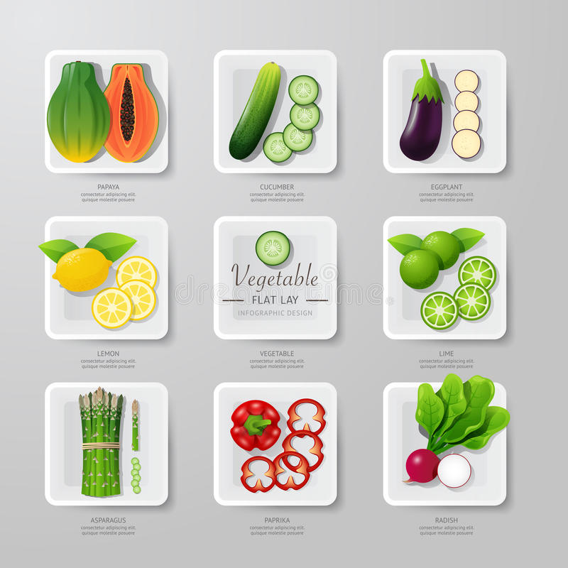 Infographic food vegetables flat lay idea. Vector illustration royalty free illustration