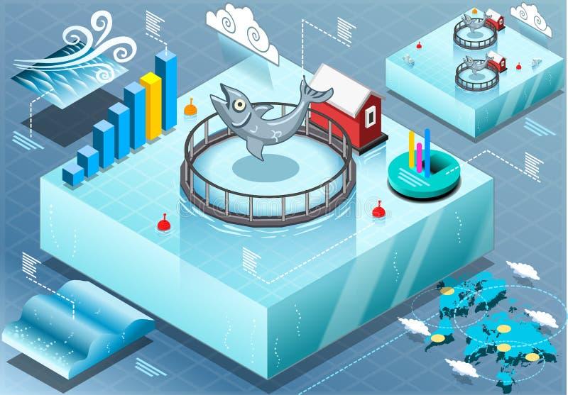 Infographic isometrico del pesce coltivato mare illustrazione vettoriale